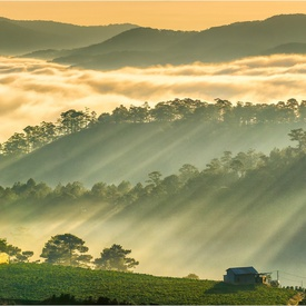 Best Time to Visit Dalat: When to Go & Monthly Weather Averages