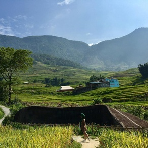 Ancient Stone Field in Sapa
