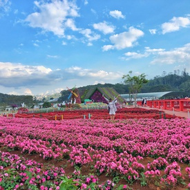 Dalat - The 11 Best Places To Visit